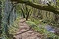 Avon Valley Path skirts Kingfisher Lake, Blashford - geograph.org.uk - 759463.jpg