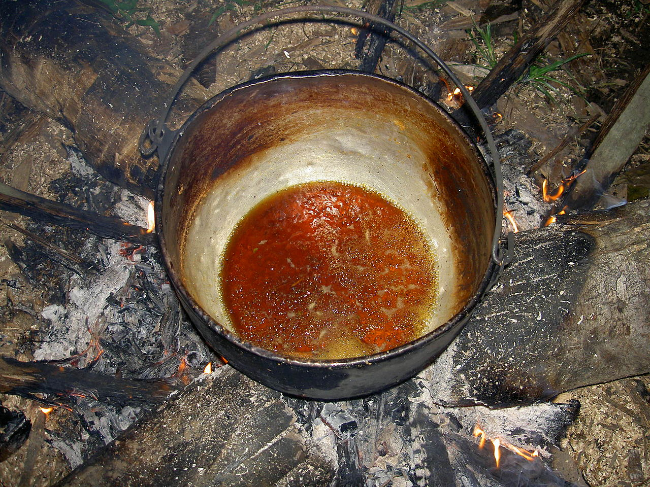 How to make ayahuasca from Banisteriopsis caapi