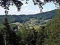 Bühlertal, Schwarzwald, black forest, forêt noire - panoramio.jpg