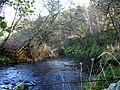 Balnagown River. - geograph.org.uk - 1572869.jpg