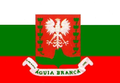 Bandeiraaguiabranca.png