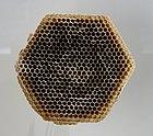 Barcelona Cosmocaixa honeycomb 02.jpg