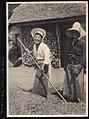 Barley Harvest in Japan 2 (1914 by Elstner Hilton).jpg