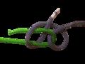 Bastard Weaver s Knot diagram-removebg-preview.png