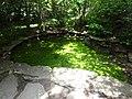 Battle Creek Cypress Swamp 67.jpg