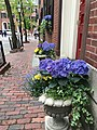 Beacon Hill, Boston, MA, USA - panoramio (19).jpg