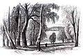 Beech-Hill-Park, the Seat of Charles Jack Esq.jpg