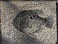 Belgrade zoo mosaic0158.JPG
