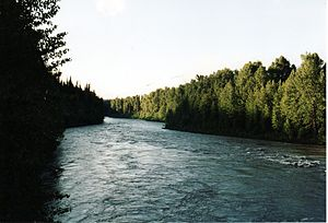 Bell-Irving River - Image: Bell Irving River
