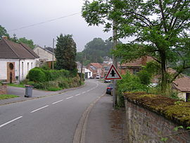 A view within Bellignies