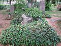 Berlin, Kreuzberg, Mehringdamm 21, Friedhof III Jerusalems- und Neue Kirche, Grab Dietmar Kamper.jpg