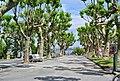 Bermeo, Biscay, Spain - panoramio (4).jpg