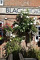 Black Horse Inn patio floral display at Nuthurst West Sussex England.jpg