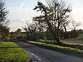 Blacksmith's Lane south of Middlewood Green - geograph.org.uk - 1582916.jpg
