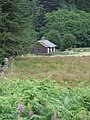 Blakehopeburnhaugh - geograph.org.uk - 522243.jpg