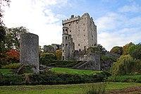 Blarney Castle-02-2017-gje.jpg