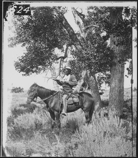 Native American scout with the U.S. 7th Cavalry Regiment who was killed at the Battle of the Little Bighorn