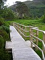 Boardwalk Near Loch Shiel - geograph.org.uk - 912963.jpg