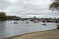 Boat Race 2014 (17).jpg
