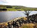 Booth Wood Reservoir - geograph.org.uk - 1432788.jpg