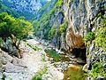 Bosco di Frasassi Ancona fiume e rocce 2.JPG