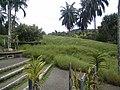 Botanical Garden of Putrajaya, Malaysia 11.jpg