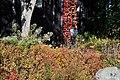 Botanischer Garten der Universität Zürich 2011-10-24 14-46-56.JPG