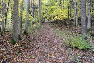 Braddock Expedition - Braddock Road trace near Fort Necessity, Pennsylvania.