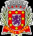 Brasao de Sao Vicente(Sao Paulo).png