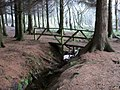 Bridge in the woods, Palacerigg Country Park - geograph.org.uk - 1618157.jpg