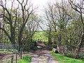 Bridge over Blacketty Water - geograph.org.uk - 167667.jpg