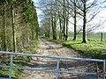 Bridleway near Fovant Wiltshire - geograph.org.uk - 357391.jpg