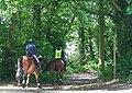 Bridleway near Iverley, Staffordshire - geograph.org.uk - 438093.jpg