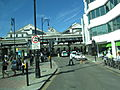 Brighton 2010 PD 047.JPG