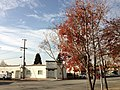 Broadmoor, San Leandro, CA 94577, USA - panoramio (1).jpg