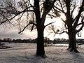 Brody, Lviv Oblast, Ukraine - panoramio (238).jpg