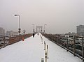 Brooklyn Bridge pedestrian walkway during snow storm January 2014.jpeg