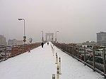 Brooklyn Bridge pedestrian walkway during snow storm January 2014.jpeg
