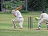 Buckhurst Hill CC v Dodgers CC at Buckhurst Hill, Essex, England 38.jpg