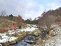 Burbage Brook. - geograph.org.uk - 122760.jpg