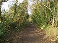 Byway to the east of Perton - geograph.org.uk - 1759319.jpg