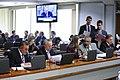 CAE - Comissão de Assuntos Econômicos (21638051331).jpg