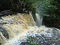 Cachoeira do santuário II - panoramio (2).jpg