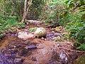 Cachoeiras em Vargem Grande.jpg