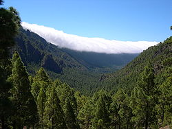 A view looking south, of La Palma from its highest point.