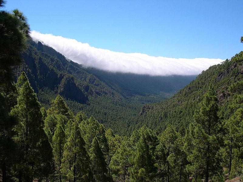 File:Caldera de Taburiente La Palma.jpg