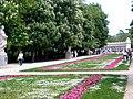 Caminos de flores conducen al retiro (527852337).jpg