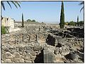 Capernaum - Sea of Galilee by Madelien Knight.jpg