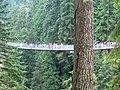 Capirano Suspension Bridge @ 緑陰に 続きし道の 揺れにゆれ (小原善郎) - panoramio.jpg