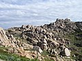 Capo Testa - panoramio - gpatgn (1).jpg